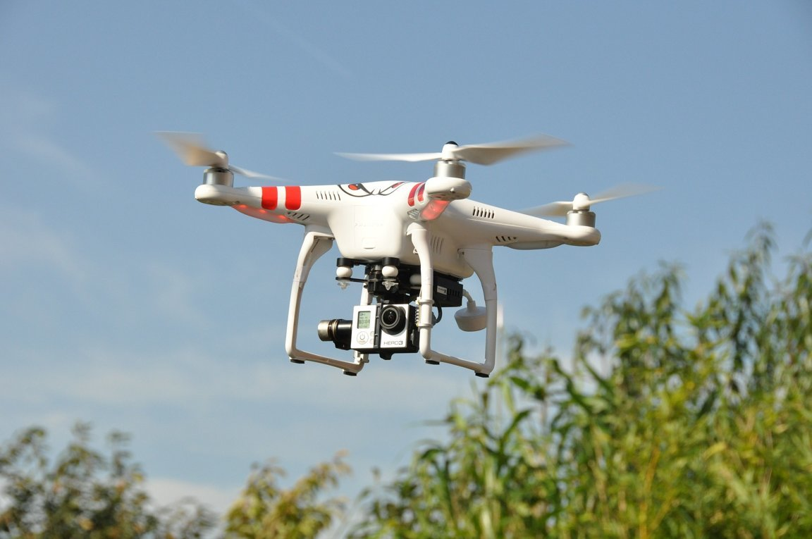 Use Drones Without Disturbing Wildlife