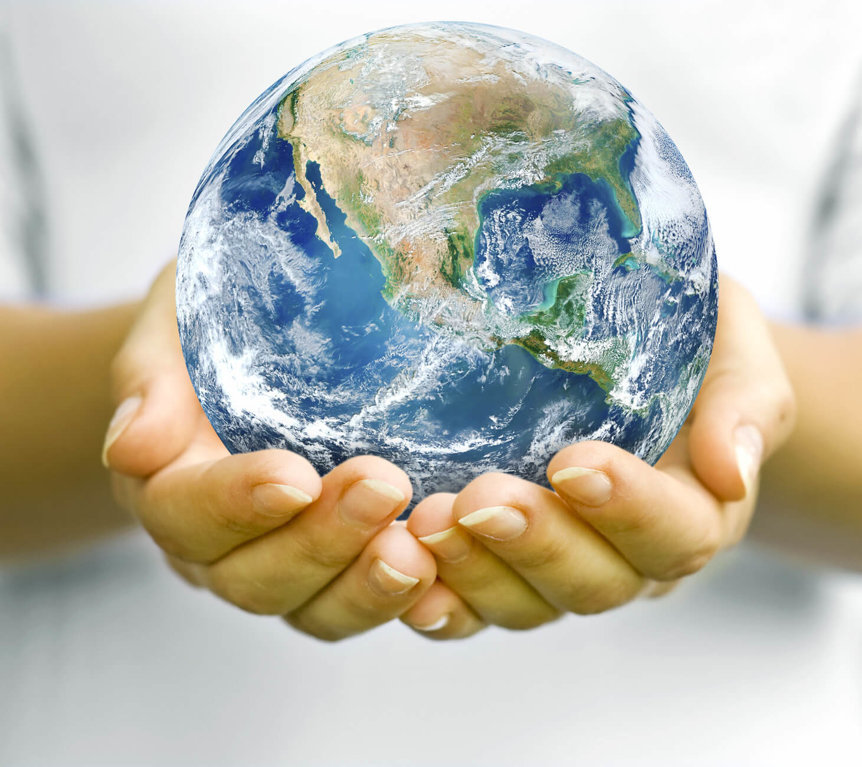 12 Steps To Become An Environmentalist