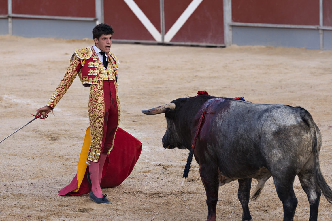 ethical questions about bullfighting Is spanish bullfighting ethical it is a cultural art form that has been practiced for many years however, at the same time, animals are being tortured and left for dead.