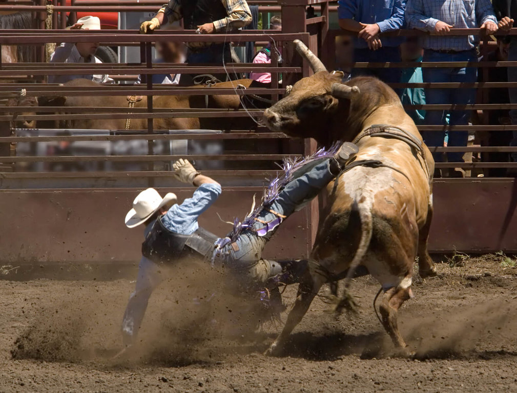 Rodeos Are Animal Abuse, Not Entertainment - Farm Animals